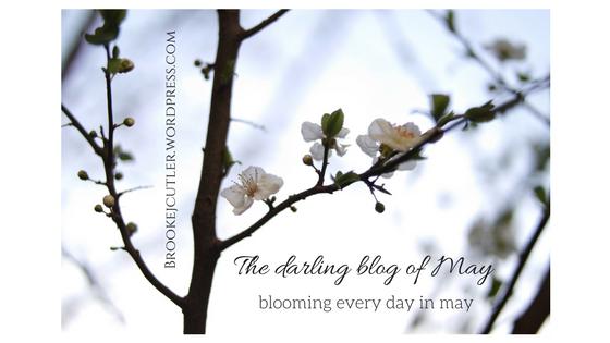 The darling blog of May