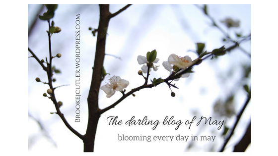 The darling blog of May