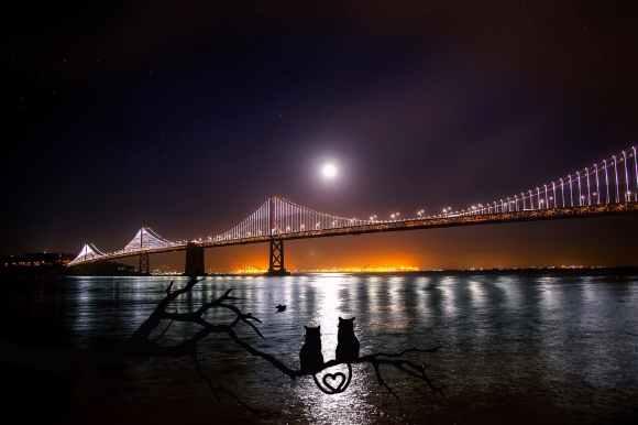 architecture atmospheric bay bay bridge