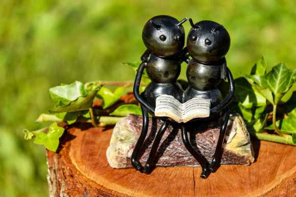 shallow focus photography of couple ants holding book figurine