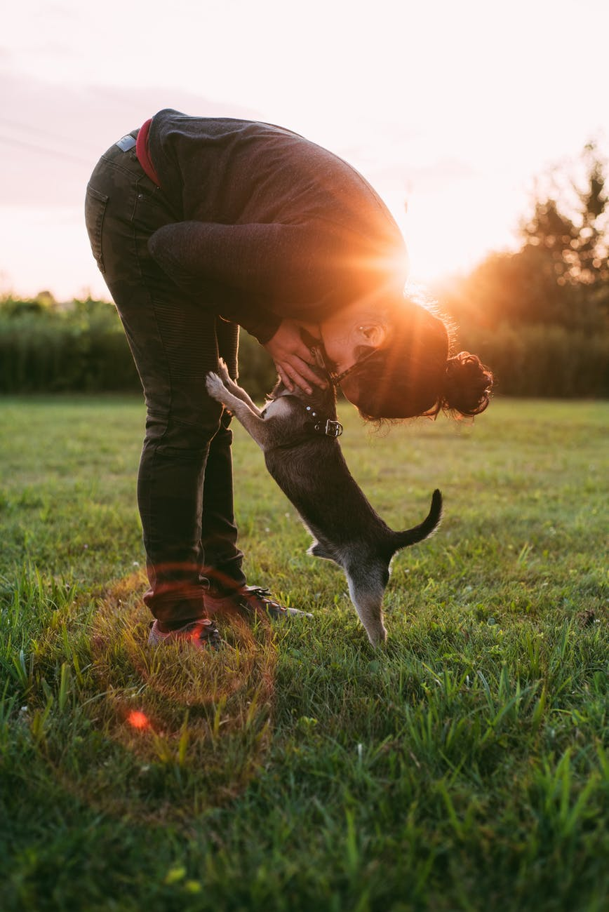 photo of person kissing a dog on grass field